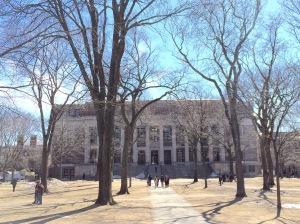 ハーバード大学2